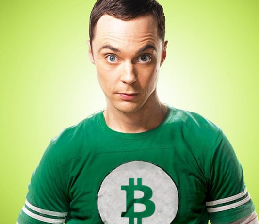 Image of Sheldon Explaining Bitcoin